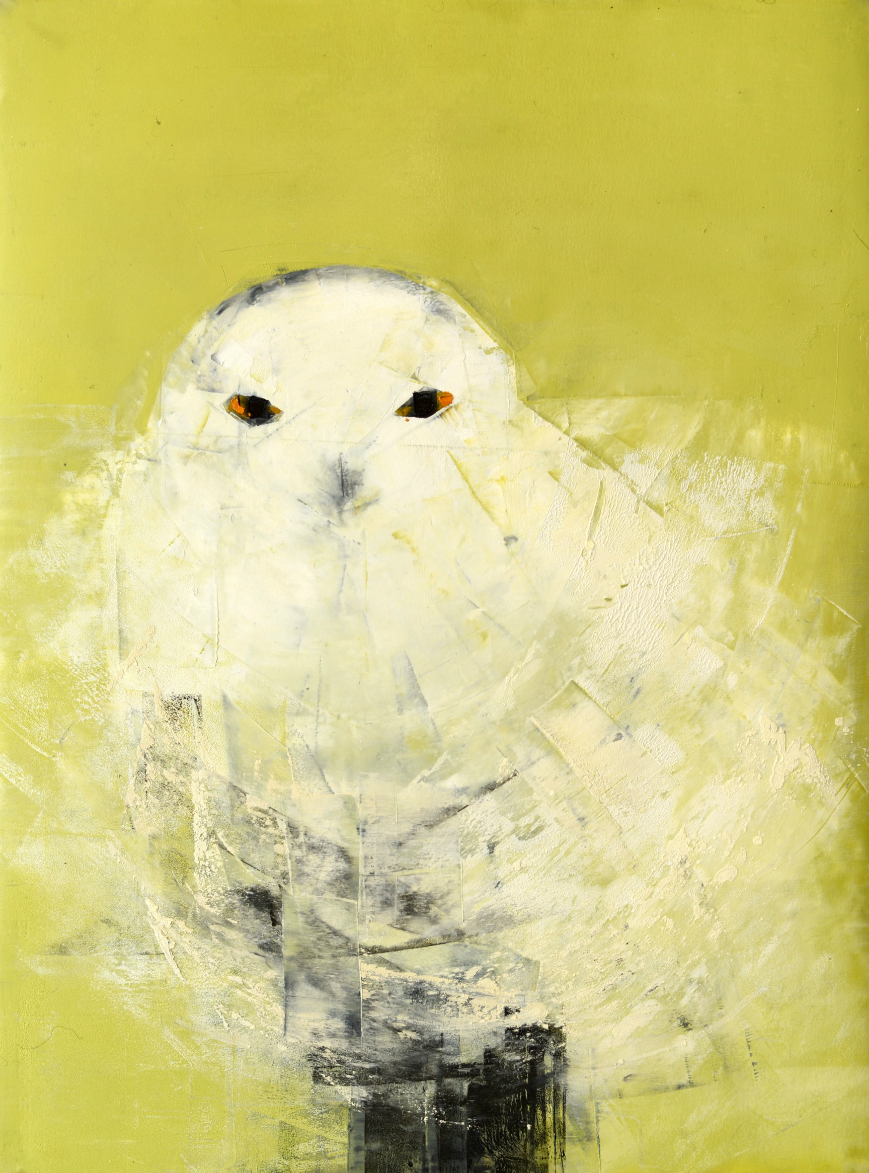 snowy-owl-white-on-green_s30-5-x-22-25